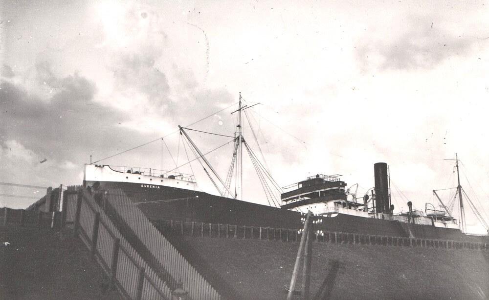Het vrachtschip torent hoog boven de dijk uit