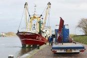 12-1-Belgische-visser
