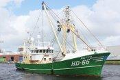 HD 66 - Pieter